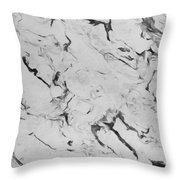 Seasonless Throw Pillow by Lourry Legarde