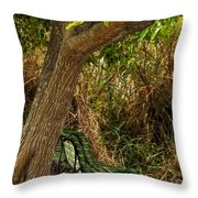 Secluded Park Benches Throw Pillow by Jess Kraft