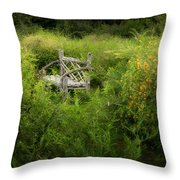 Seclusion Throw Pillow by Bill Wakeley