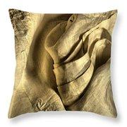 Seductive Throw Pillow by Lauren Leigh Hunter Fine Art Photography