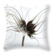 Seeds Throw Pillow by Anne Gilbert