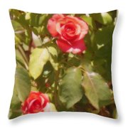 Seeing Double Throw Pillow by Bobbee Rickard