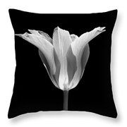 Sentry Tulip Flower Black And White Throw Pillow by Jennie Marie Schell