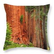 Sequoias Throw Pillow by Inge Johnsson