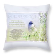 Serenity Prayer Throw Pillow by Holly Kempe