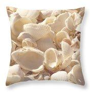 She Sells Seashells Throw Pillow by Kim Hojnacki