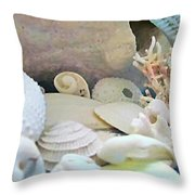 Shells In Pastels Throw Pillow by Danielle  Parent