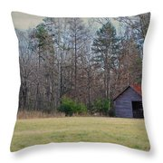 Shelter In The Midle Of Nowhere Throw Pillow by Paulette B Wright