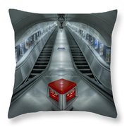 Shine In Silver Throw Pillow by Evelina Kremsdorf