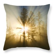 Shining Through Throw Pillow by Peggy Collins