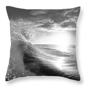 Shiny Comforter Throw Pillow by Sean Davey