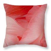 Shirley Poppies Throw Pillow by Theresa Tahara