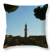 Sienna Serenity Throw Pillow by Barbara Stellwagen