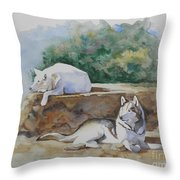 Siesta time Throw Pillow by Suzanne Schaefer