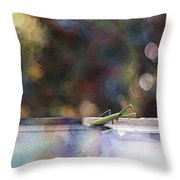 Signs Throw Pillow by Kathy Bassett