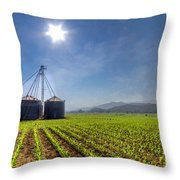 Silos Throw Pillow by Debra and Dave Vanderlaan