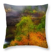 Silver Falls Pano Throw Pillow by Darren  White