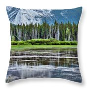 Silver Reflections Throw Pillow by Linda Sannuti