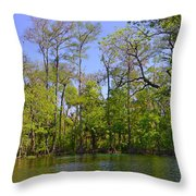 Silver River Florida Throw Pillow by Christine Till