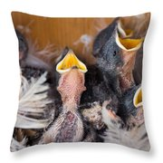 Singing For Supper Throw Pillow by Bill Pevlor