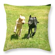 Sisters Throw Pillow by Donna Doherty