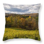 Six Mile Creek Vineyard Throw Pillow by Michele Steffey