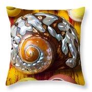 Six Snails Shells Throw Pillow by Garry Gay