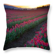 Skagit Valley Blazing Sunrise Throw Pillow by Inge Johnsson