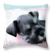Sleeping Mini Schnauzer Throw Pillow by Stephanie Frey