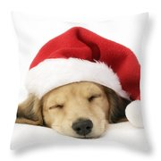 Sleeping Santa Puppy Throw Pillow by Greg Cuddiford