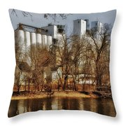 Small Co-op 2 Throw Pillow by Todd and candice Dailey