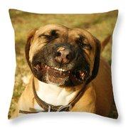 Smiling Throw Pillow by Kristia Adams