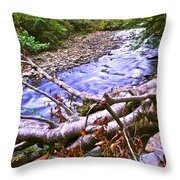 Smoky Mountain Stream Two Throw Pillow by Frozen in Time Fine Art Photography