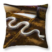 Snake Skeleton And Old Books Throw Pillow by Garry Gay