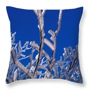 Snow And Ice Coated Branches Throw Pillow by Anonymous