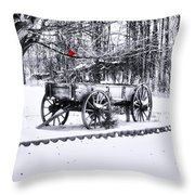 Snow Bound Throw Pillow by Mary Timman