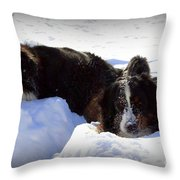 Snow Eaters Throw Pillow by Patti Whitten