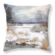 Snow Lake Throw Pillow by Mary Timman