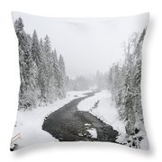 Snow Landscape - Trees And River In Winter Throw Pillow by Matthias Hauser