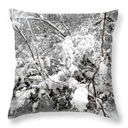 Snow Scene 4 Throw Pillow by Patrick J Murphy
