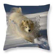 Snowplow Throw Pillow by Lois Bryan