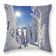 Snowscape Snow Covered Trees And Bright Sun Throw Pillow by Anonymous