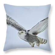 Snowy Owl In Flight Throw Pillow by Everet Regal