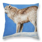 Snowy Wolf Throw Pillow by Crista Forest