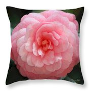 Soft and Pink Throw Pillow by Suzanne Gaff