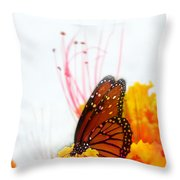 Soft Embrace Throw Pillow by Kume Bryant