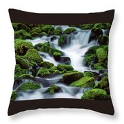 Sol Duc Throw Pillow by Ginny Barklow