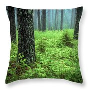 Solstice Glow  Throw Pillow by Mary Amerman