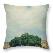Some Days I Believe Throw Pillow by Laurie Search