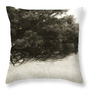 Somewhere To Dream Throw Pillow by Amy Weiss